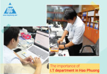 The importance of I.T department in Hao Phuong