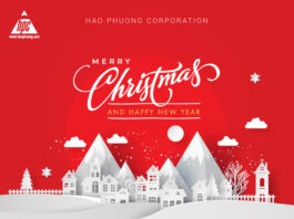 The special joy of Christmas 2020 at Hao Phuong